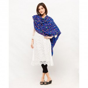 blue Acrowool Kashmiri / Water Pashmina Embroidered Aari Shawl SHL-137