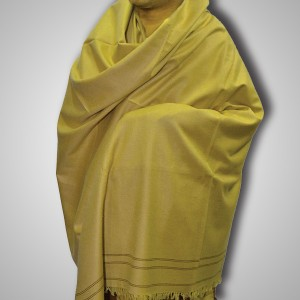 Light Chocolate Color Woolen Kashmiri / Pashmina SHL-002