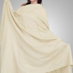 Off White Color Semi Pure Kashmiri / Pashmina Shawl SHL-010